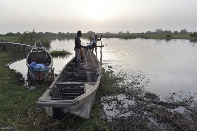 Khủng bố ở Nigeria, 31 ngư dân thiệt mạng - ảnh 1