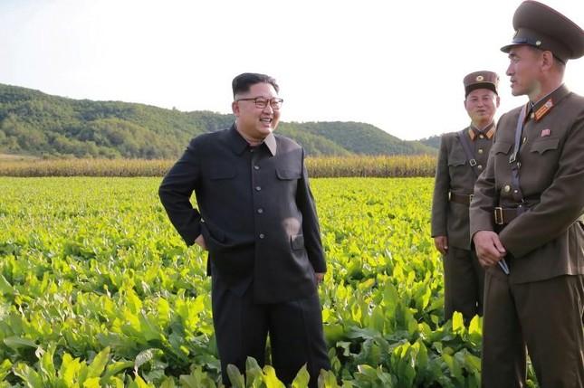 Nga cung cấp kết nối internet mới cho Bắc Triều Tiên - ảnh 1