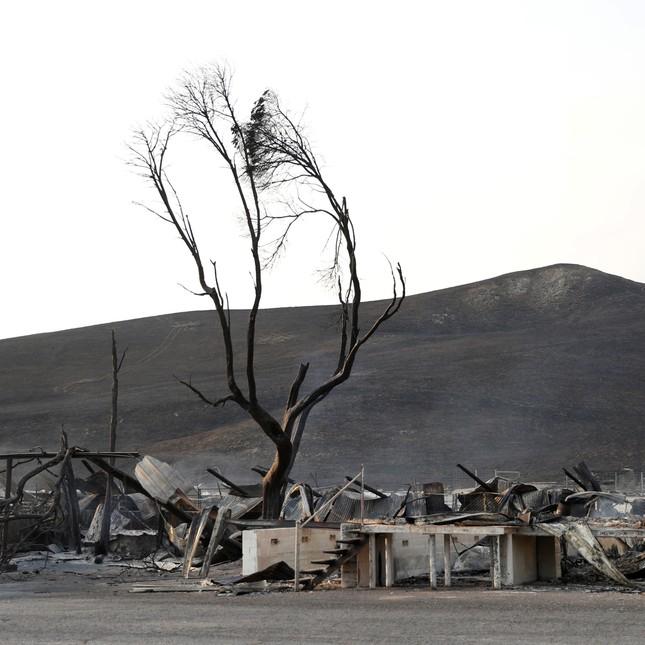 Toàn cảnh sự tàn phá nặng nề của vụ cháy rừng lịch sử tại Mỹ - ảnh 6