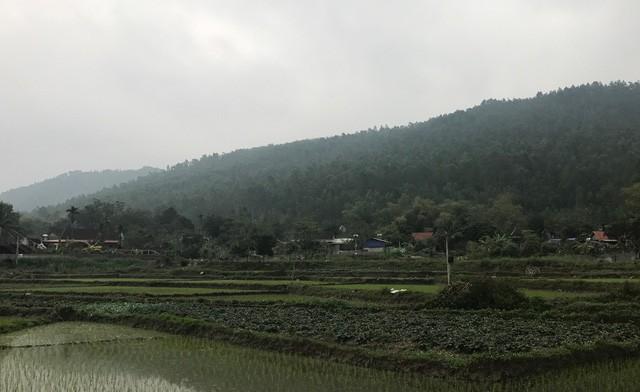 Xây công viên nghĩa trang tại huyện Tam Đảo: Cần cân nhắc kỹ lưỡng - ảnh 1