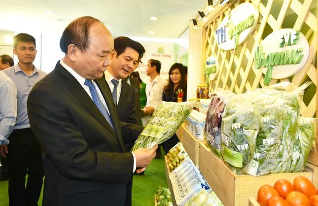 Thủ tướng: Thái Bình cần mở rộng không gian ra Biển Đông - ảnh 2