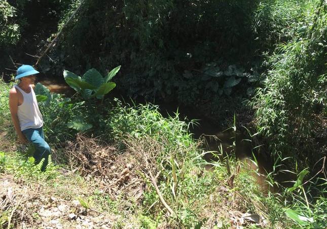 Thừa Thiên Huế: Khu công nghiệp Phong Điền không có hệ thống xử lý nước thải - ảnh 1