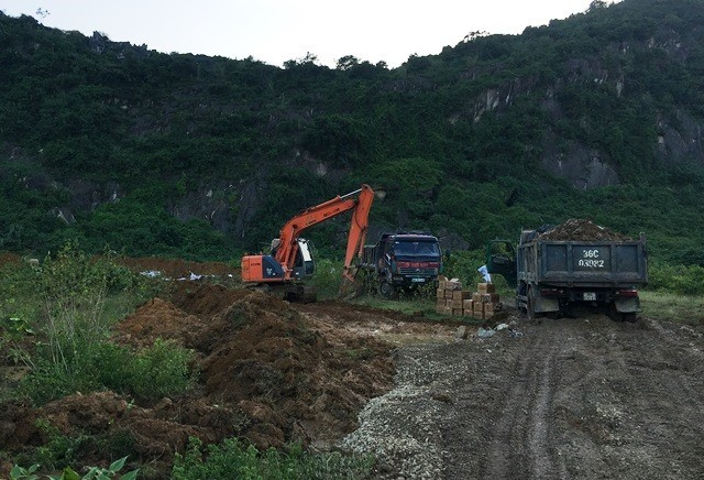 Đóng bì chôn hàng nghìn con lợn bị chết đuối ở Thanh Hóa - ảnh 8