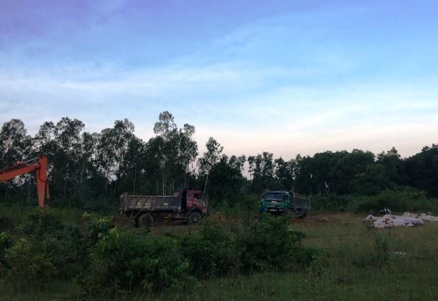 Đóng bì chôn hàng nghìn con lợn bị chết đuối ở Thanh Hóa - ảnh 9