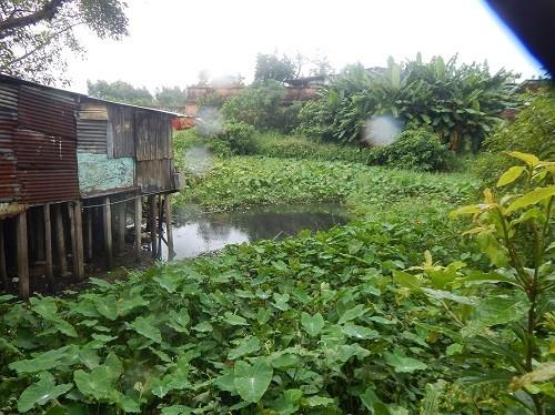TP.Huế: Nhiều năm chịu đựng ô nhiễm, dân Hộ Thành hào tha thiết sớm di dời - ảnh 4