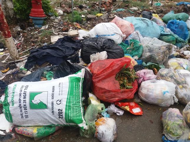 Khu vực cấm đổ rác lại trở thành bãi rác - ảnh 1