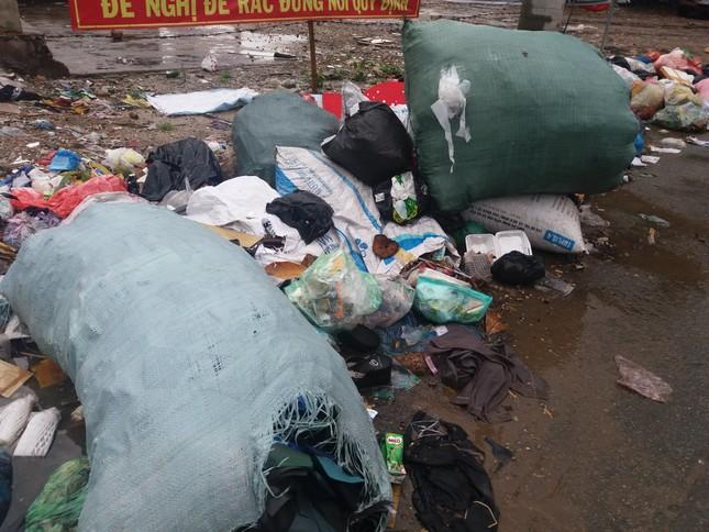Khu vực cấm đổ rác lại trở thành bãi rác - ảnh 2