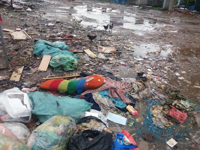 Khu vực cấm đổ rác lại trở thành bãi rác - ảnh 3
