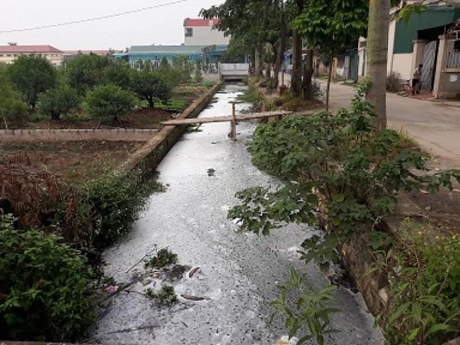Huyện Thường Tín: 300m mương bị bức tử vì xả thải - ảnh 1
