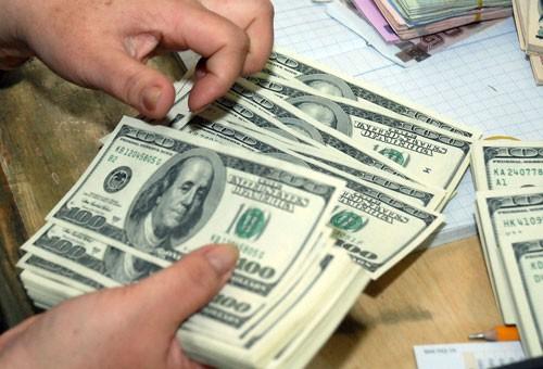 Từ hôm nay, cá nhân gửi tiền bằng USD lãi suất 0% - ảnh 1