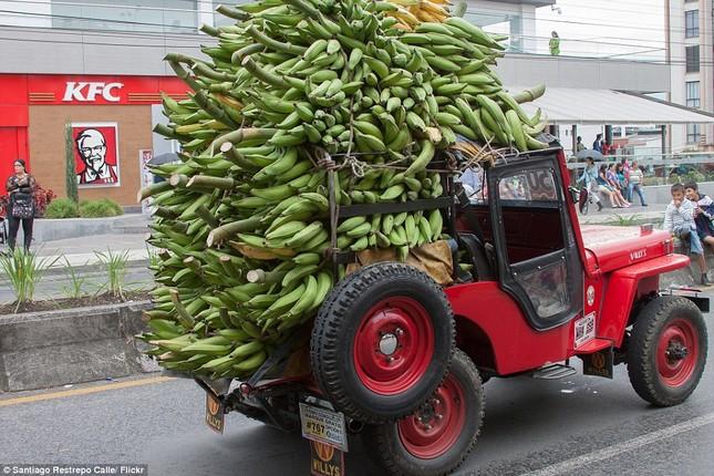 Kì lạ cuộc diễu hành xe Jeep có '1-0-2' ở Colombia - ảnh 1
