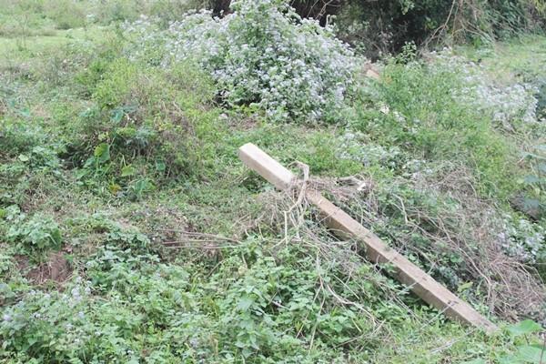 Tận mục dự án tiền tỷ bỏ hoang ở Hòa Bình - ảnh 6