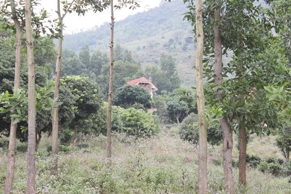 Tận mục dự án tiền tỷ bỏ hoang ở Hòa Bình - ảnh 8