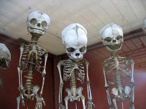 Khám phá những bảo tàng có '1-0-2' khiến người xem phải khiếp sợ - ảnh 1