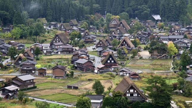 Khám phá làng cổ làng cổ Shirakawa-go và Gokayama ở Nhật - ảnh 1