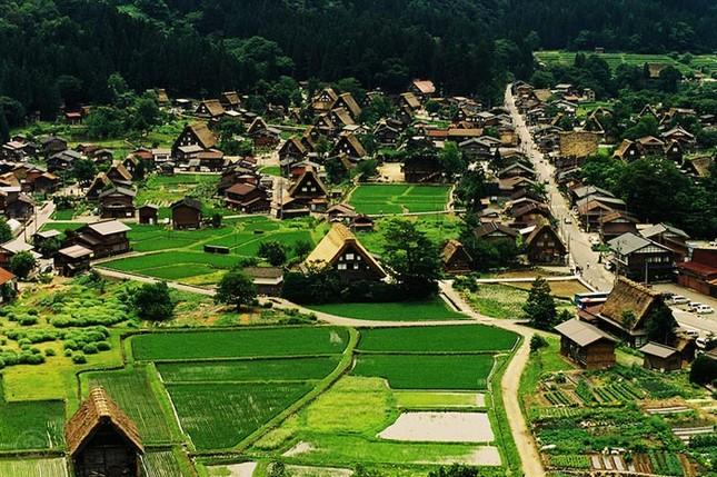 Khám phá làng cổ làng cổ Shirakawa-go và Gokayama ở Nhật - ảnh 7