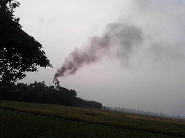 Cơ sở chế biến gỗ gây ô nhiễm 'phớt lờ' quyết định xử phạt? - ảnh 2