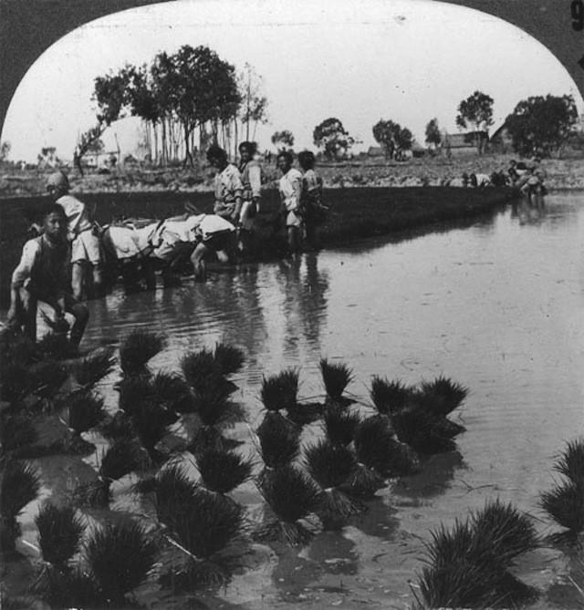 Trung Quốc cuốn hút trong bộ ảnh đen trắng thập niên 1930 - ảnh 7