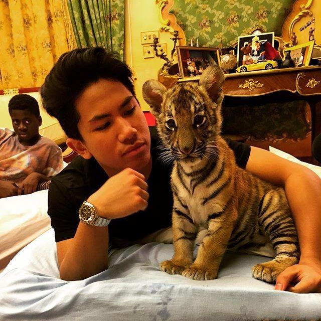 Soi khối tài sản khủng của hoàng tử 'soái ca' Brunei - ảnh 3