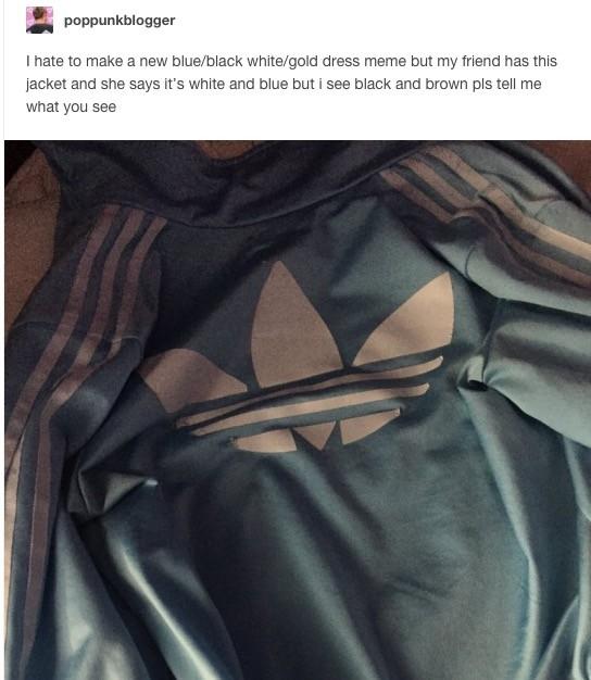 Thế giới mạng lại tranh cãi nảy lửa về màu sắc của chiếc áo này - ảnh 2