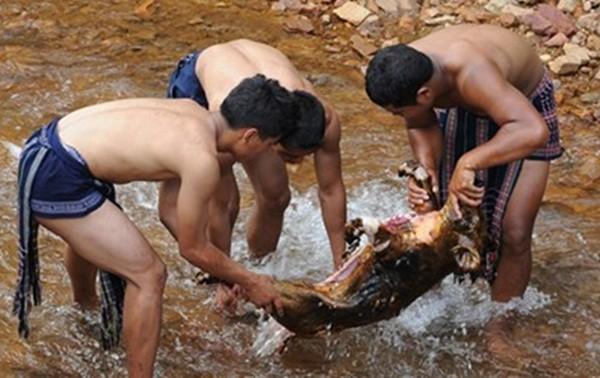 Độc đáo lễ cúng bến nước xưa và nay ở Tây Nguyên - ảnh 1