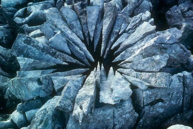 Biến hóa nghệ thuật từ gậy và đá của nhà điêu khắc người Anh - ảnh 6