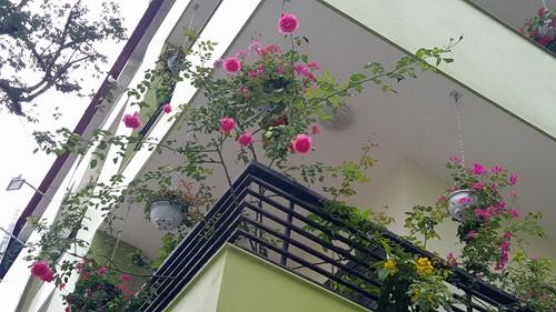 Vườn rau 40 m2 bội thu trên mái nhà khiến nhiều người ngưỡng mộ - ảnh 12