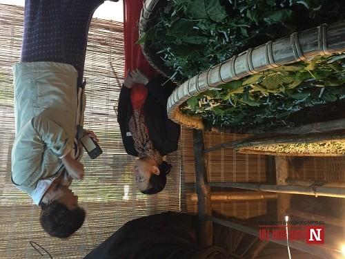 Festival làng lụa Việt Nam - châu Á 2016 'hút' khách quốc tế - ảnh 6