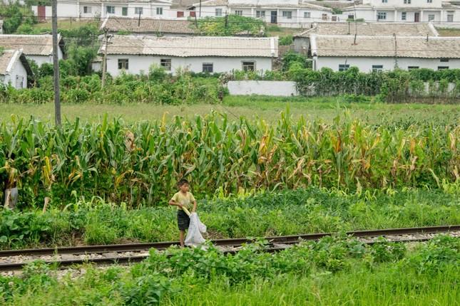 Triều Tiên qua những bức ảnh 'chụp lén' bằng điện thoại - ảnh 13