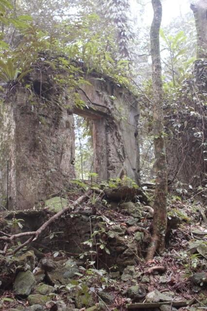 Phế tích biệt thự cũ thời Pháp ở Vườn Quốc gia Ba Vì - ảnh 6