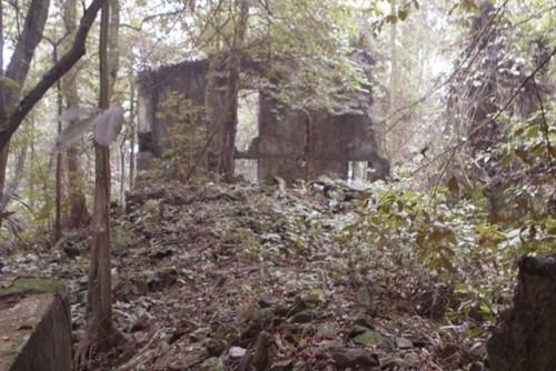 Phế tích biệt thự cũ thời Pháp ở Vườn Quốc gia Ba Vì - ảnh 3