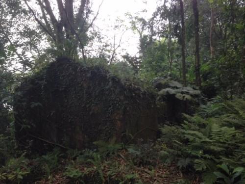 Phế tích biệt thự cũ thời Pháp ở Vườn Quốc gia Ba Vì - ảnh 4