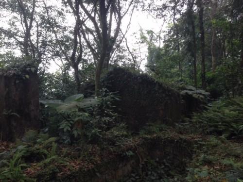 Phế tích biệt thự cũ thời Pháp ở Vườn Quốc gia Ba Vì - ảnh 2