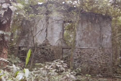 Phế tích biệt thự cũ thời Pháp ở Vườn Quốc gia Ba Vì - ảnh 7