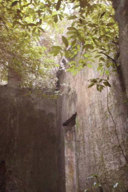 Phế tích biệt thự cũ thời Pháp ở Vườn Quốc gia Ba Vì - ảnh 1