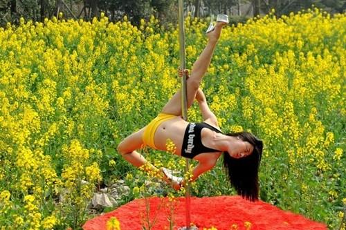 Dân mạng 'ném đá' gái trẻ diện bikini múa cột giữa vườn cải - ảnh 3