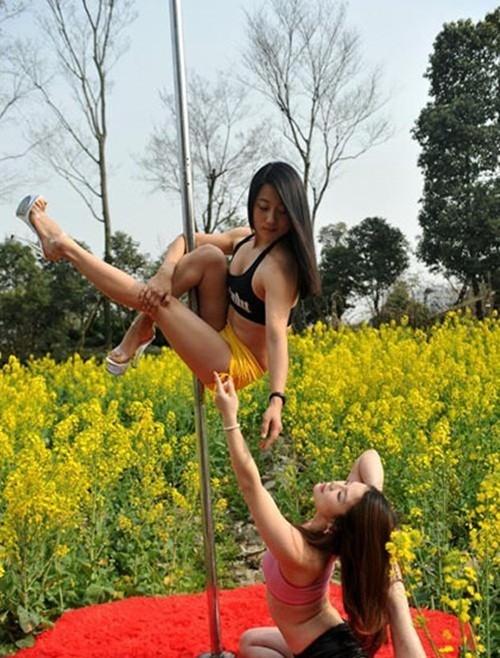 Dân mạng 'ném đá' gái trẻ diện bikini múa cột giữa vườn cải - ảnh 6