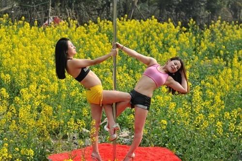 Dân mạng 'ném đá' gái trẻ diện bikini múa cột giữa vườn cải - ảnh 2