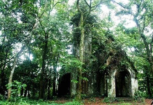 Khám phá những căn biệt thự cổ trong vườn quốc gia Ba Vì - ảnh 3