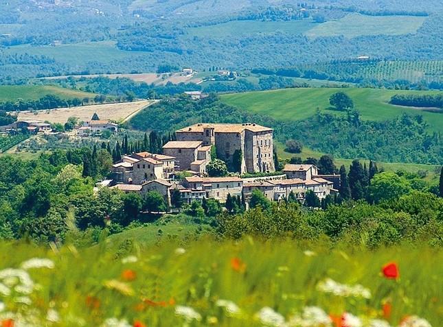 8,3 triệu đô la để tìm chủ nhân cho lâu đài hơn 10 thế kỷ ở Ý - ảnh 4