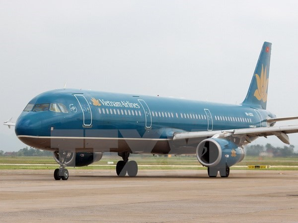 Kiểm toán đồng loạt tại Vietnam Airlines và 12 công ty con - ảnh 1