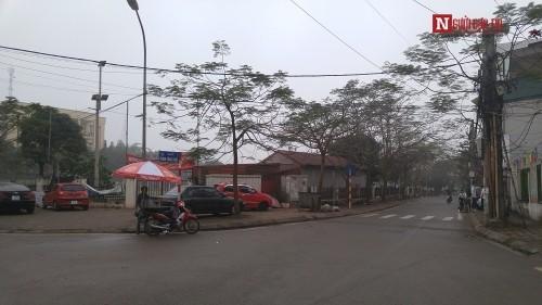 Con đường mang tên Trịnh Công Sơn giữa lòng Hà Nội - ảnh 5