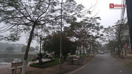 Con đường mang tên Trịnh Công Sơn giữa lòng Hà Nội - ảnh 4