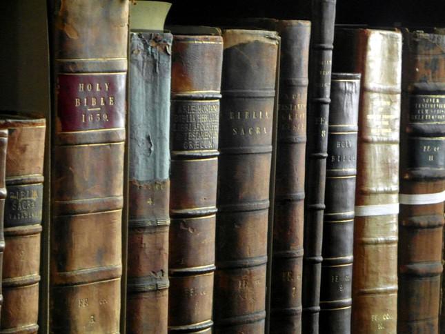 Chiêm ngưỡng thư viện cổ hơn 300 năm tuổi - ảnh 4