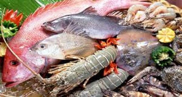 Những đặc điểm giúp phân biệt cá biển tươi và cá bị nhiễm độc - ảnh 1