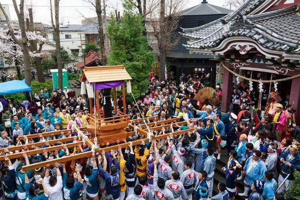 Hàng nghìn người tham dự 'Lễ hội dương vật thép' lớn nhất  ở Nhật - ảnh 3