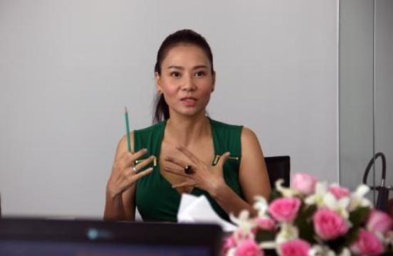 Vụ Thu Minh kiện công ty BĐS: Tiết lộ về chủ nhân C.T Phương Nam - ảnh 2