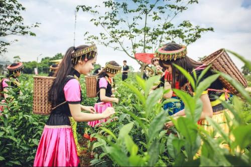 Bộ ảnh kỷ yếu 'độc nhất vịnh Bắc Bộ' của học sinh Ninh Bình - ảnh 5