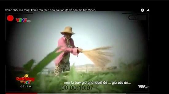 Vụ 'dùng chổi quét rau', VTV bị phạt 50 triệu đồng - ảnh 1