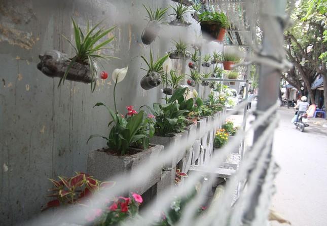 Chàng sinh viên biến bãi rác thành vườn hoa đẹp lung linh - ảnh 1